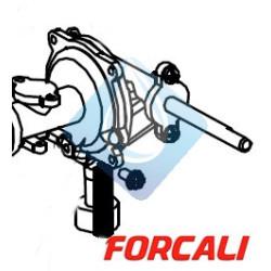 Grupo de Válvula de Agua Forcali